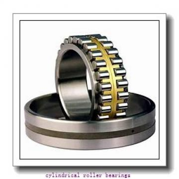 1.969 Inch   50 Millimeter x 3.15 Inch   80 Millimeter x 1.575 Inch   40 Millimeter  IKO NAS5010ZZNR  Cylindrical Roller Bearings