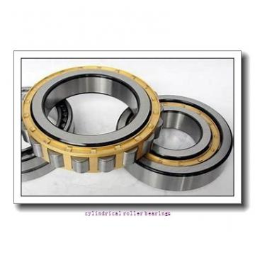 3.799 Inch | 96.5 Millimeter x 130 mm x 0.866 Inch | 22 Millimeter  SKF RNU 1017 MA  Cylindrical Roller Bearings