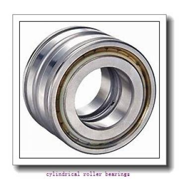 3.543 Inch   90 Millimeter x 5.512 Inch   140 Millimeter x 2.638 Inch   67 Millimeter  IKO NAS5018ZZNR  Cylindrical Roller Bearings
