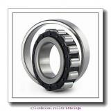 3.74 Inch | 95 Millimeter x 6.693 Inch | 170 Millimeter x 2.188 Inch | 55.575 Millimeter  ROLLWAY BEARING E-5219-UMR  Cylindrical Roller Bearings